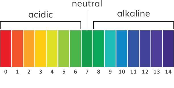 Chart ph alkaline and acidic scale vector Chart ph alkaline and acidic scale vector  illustration acid stock illustrations