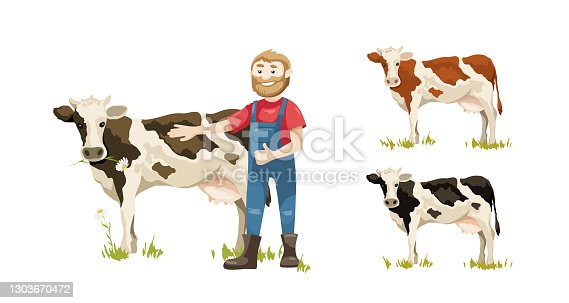 Vector illustration, dairy farm, set of multicolored spotted cows.