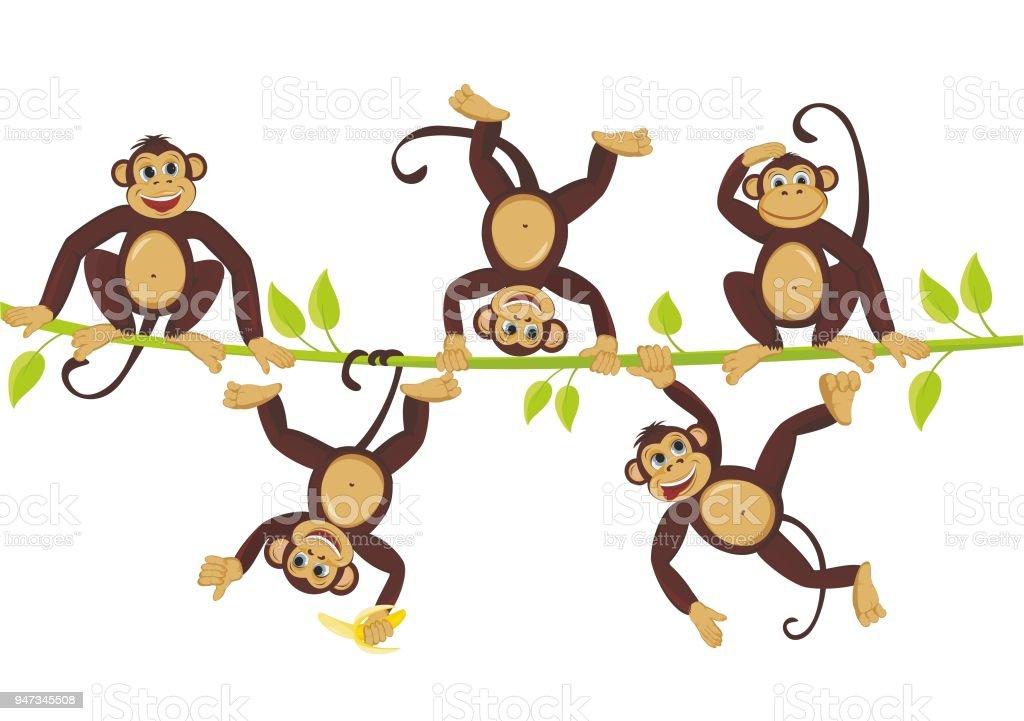 Fröhlichen Affen toben auf eine Rebe fröhlichen Affen toben auf einem Weinstock – Vektorgrafik