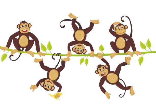 cheerful monkeys frolic on a vine cheerful monkeys frolic on a vine - monkey stock illustrations