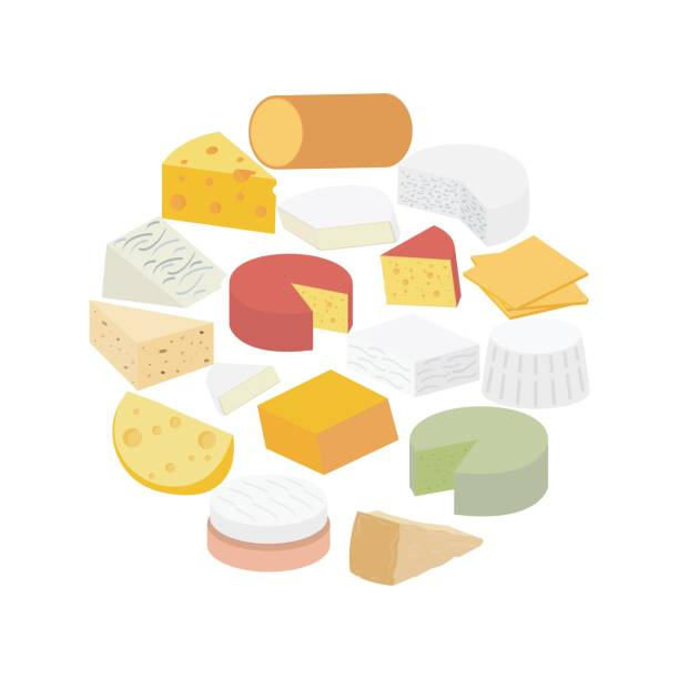 illustrazioni stock, clip art, cartoni animati e icone di tendenza di cheese. brie, blue, roquefort, camembert, ricotta, feta, maasdam, smoked, pepper jack, cheddar, american, parmesan, gouda, swiss - formaggio