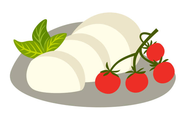Cheese Buffalo mozzarella vector illustration Cheese Buffalo mozzarella vector illustration. Mozzarella slice with basil and tomato cherry. Cartoon style icon, isolated on white background mozzarella stock illustrations
