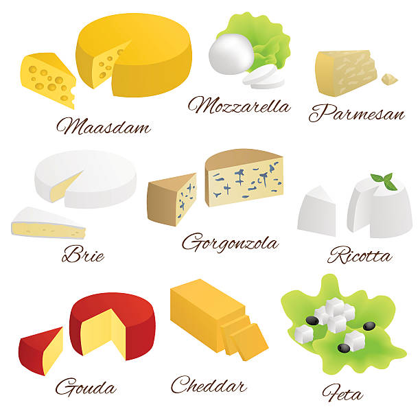 Cheese isolated food set different types illustration vector Cheese isolated food set different types illustration vector mozzarella stock illustrations