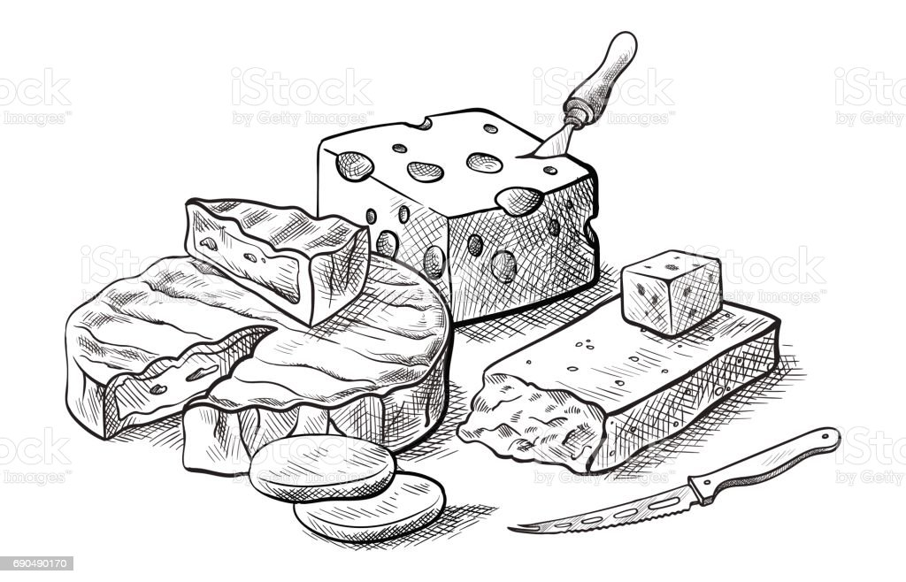 Käse, verschiedene Arten von Käse Satz von Vektor-Skizzen – Vektorgrafik
