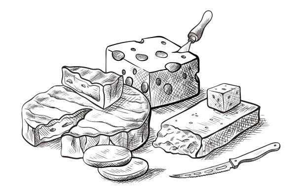 Fromagerie de divers types d'ensemble de fromage de dessins vectoriels - Illustration vectorielle