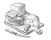 cheese making various types of cheese set of vector sketches