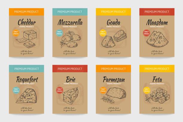 ilustrações de stock, clip art, desenhos animados e ícones de cheese posters. gourmet food vintage sketch, organic menu design, cheese and milk product package. vector doodle snacks banner - queijo