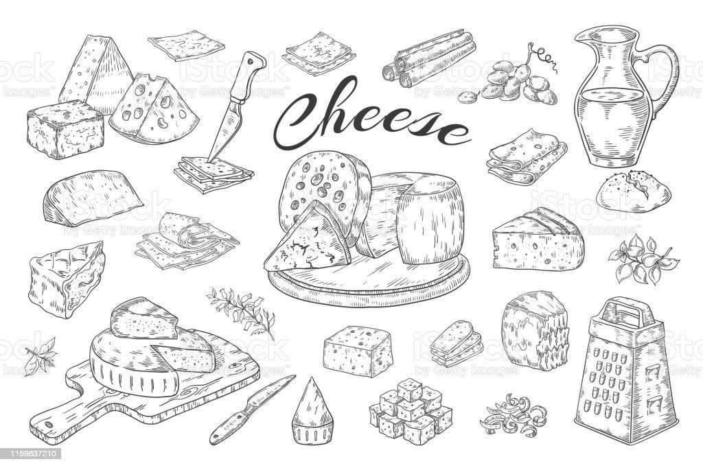 Сырный эскиз. Нарисованные вручную молочные продукты, ломтики изысканной пищи, чеддер Пармезан бри. Векторный завтрак Винтажная иллюстрац� - Векторная графика Белый роялти-фри