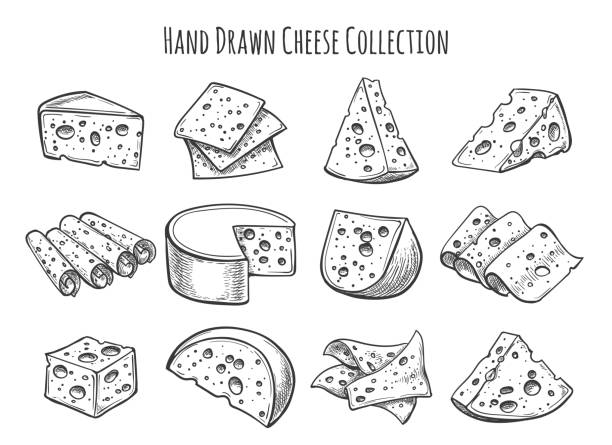 Cheese sketch set Cheese sketch set. Vector doodle collection of cheese pieces and slices cheese stock illustrations