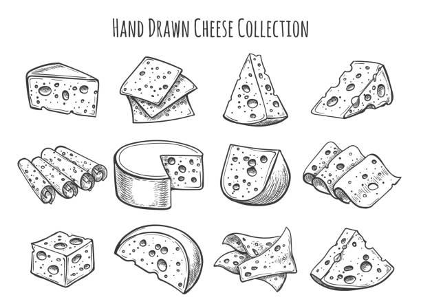 ilustrações de stock, clip art, desenhos animados e ícones de cheese sketch set - cheese