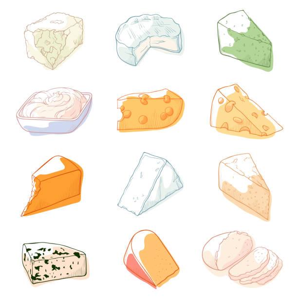 ilustrações de stock, clip art, desenhos animados e ícones de cheese sketch set - queijo