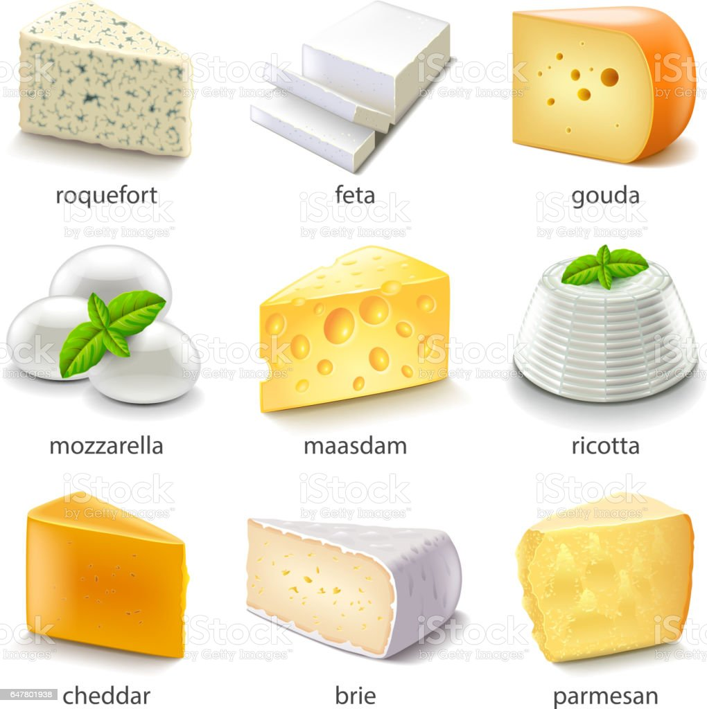 Cheese types icons vector set vector art illustration