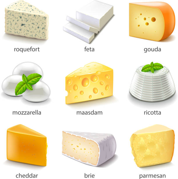 Cheese types icons vector set Cheese types icons detailed photo realistic vector set mozzarella stock illustrations