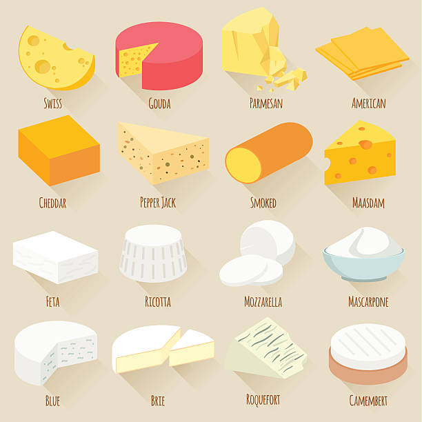 Cheese varieties. Flat design vector icon set. Popular kind of cheese. Flat design vector icon set. mozzarella stock illustrations