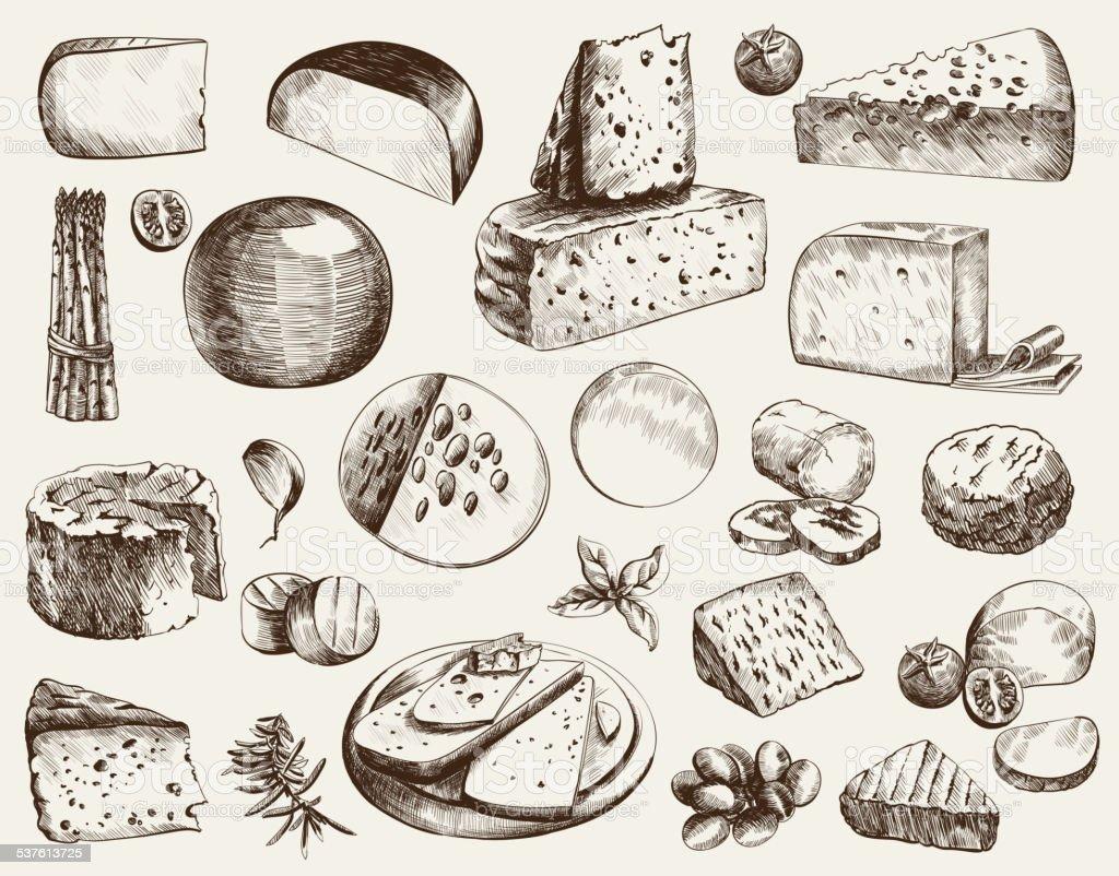 cheesemaking vector art illustration