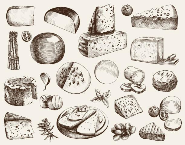 ilustrações de stock, clip art, desenhos animados e ícones de cheesemaking - cheese