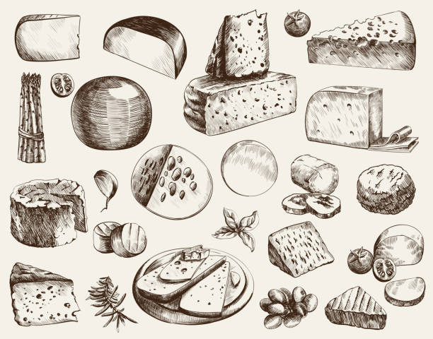 cheesemaking - сыр stock illustrations