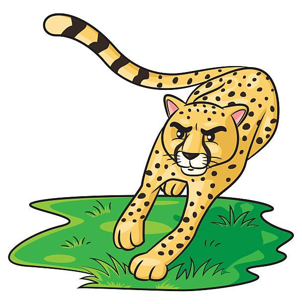 Royalty Free Cheetah Running Clip Art, Vector Images ...