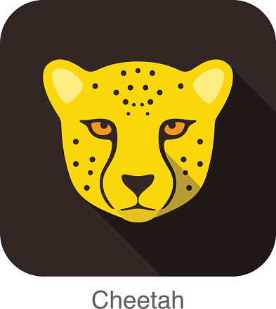 Cheetah, Cat breed face cartoon flat icon design