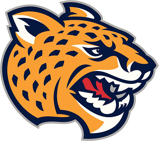 cheetah jaguar mascot - jaguar stock illustrations