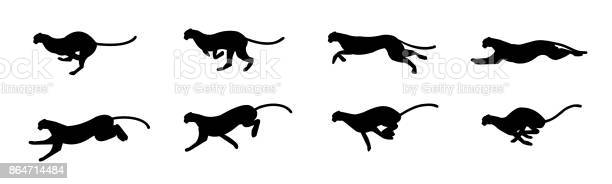 Cheetah run cycle vector id864714484?b=1&k=6&m=864714484&s=612x612&h=ezphg bmqmnd0sxw9lg0ikgzzlgqazqkoo4yjagds1g=