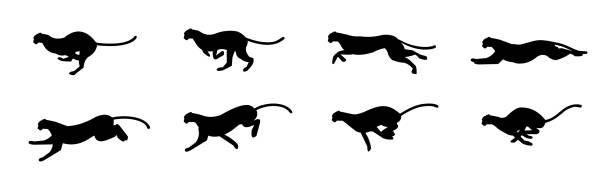 cheetah run cycle - jaguar stock illustrations
