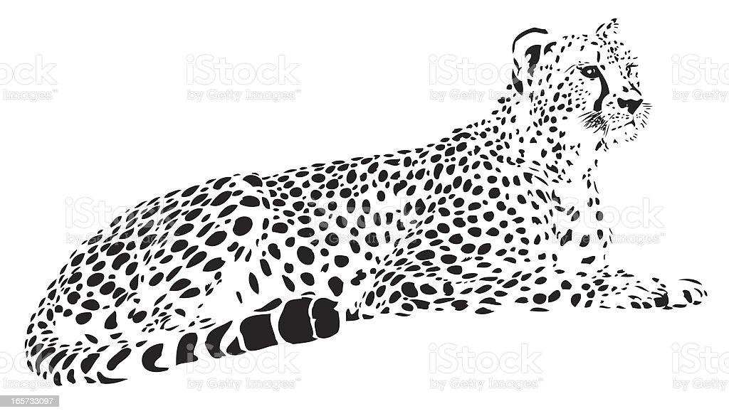 Cheetah vector royalty-free stock vector art