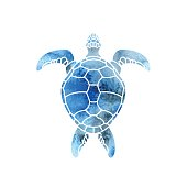 Cheloniidae. Turtle. Wildlife. Silhouette. Symbol, icon. Vector illustration.