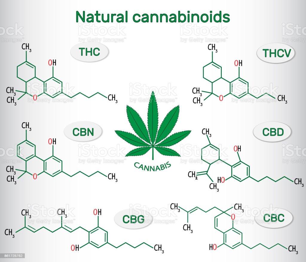 Chemischen Formeln Von Natürlichen Cannabinoiden Bei