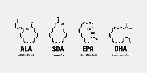 chemical structure of omega-3 fatty acids. Stearidonic Acid (SDA), Eicosapentaenoic Acid (EPA), Docosahexaenoic Acid (DHA) and Alpha-linolenic Acid (ALA).