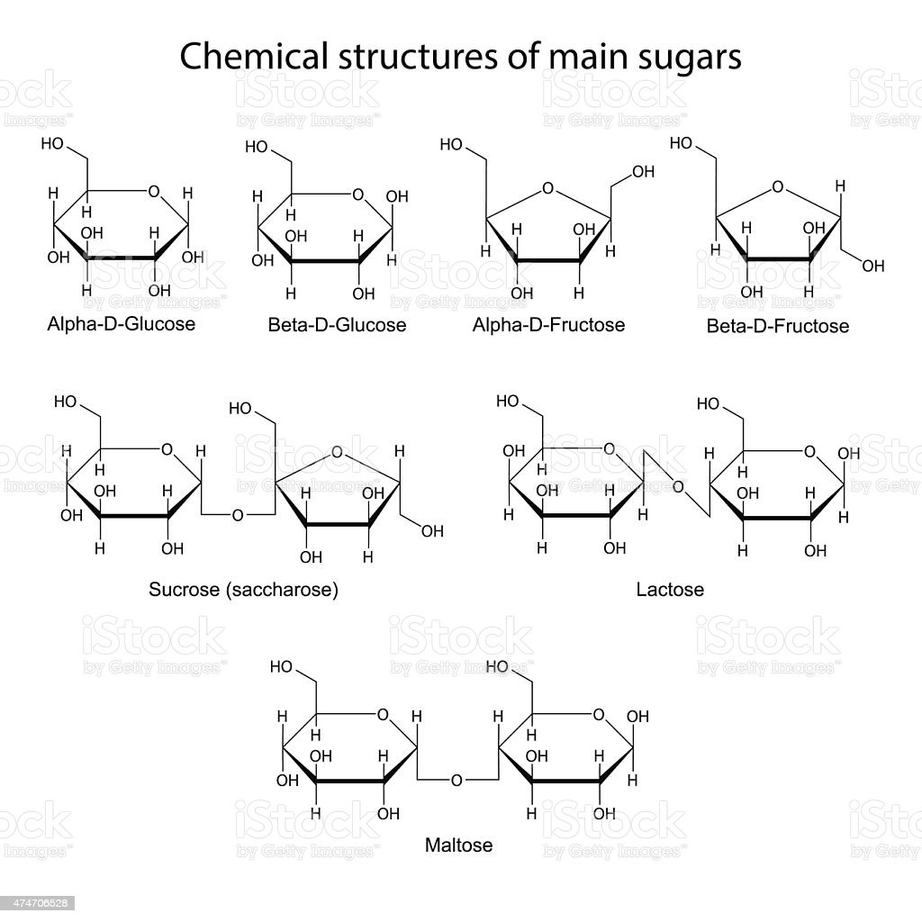 Chemical structures of main sugars: mono- and disaccharides vector art illustration