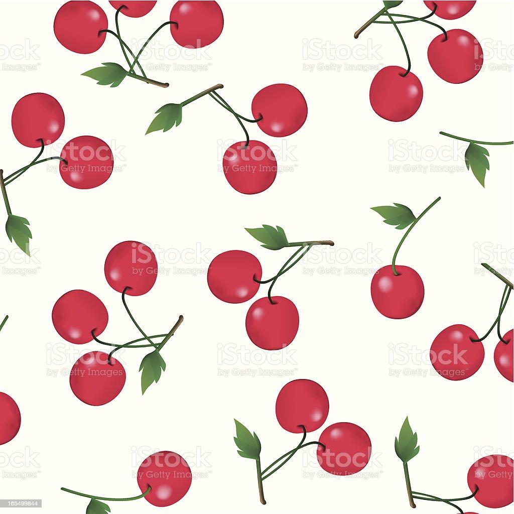 Cherries on White vector art illustration