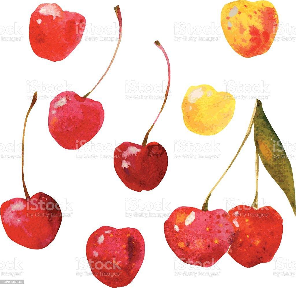 cherries vector art illustration