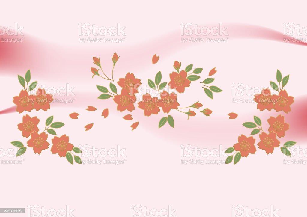 Kirschblüte Hintergrund Rosengewächse Blumen Frühling Hintergrund ...