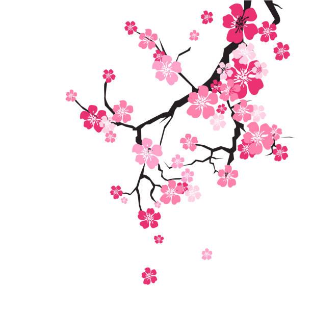 枝桜背景サクラ花ピンク - 桜点のイラスト素材/クリップアート素材/マンガ素材/アイコン素材
