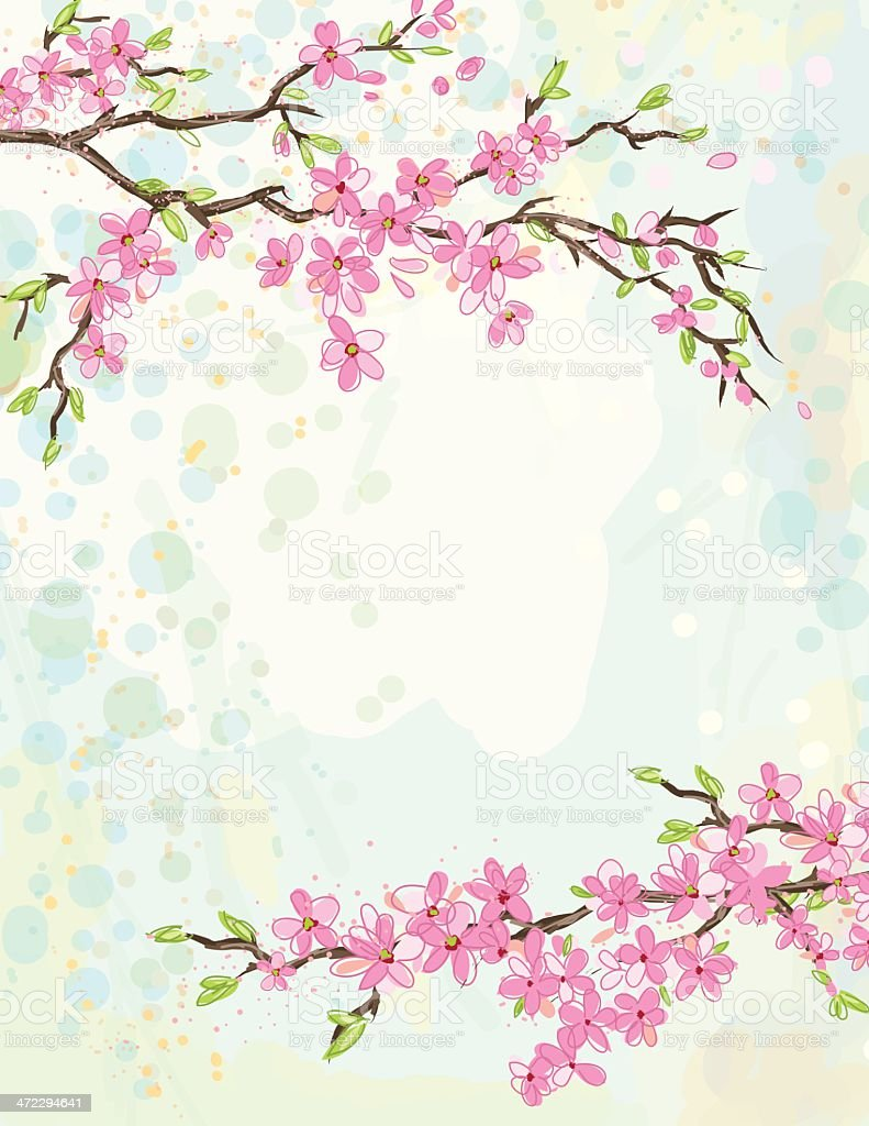 Cherry Blossom Background royalty-free cherry blossom background stock vector art & more images of backgrounds