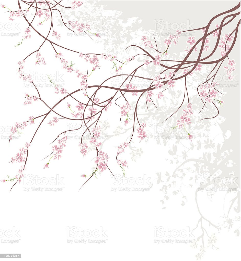Cherry Blossom Branch royalty-free cherry blossom branch stock vector art & more images of abstract