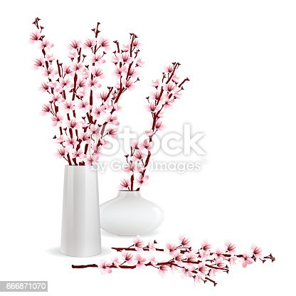 Cherry Blossom Branches In Vase Stock Vector Art More Images Of