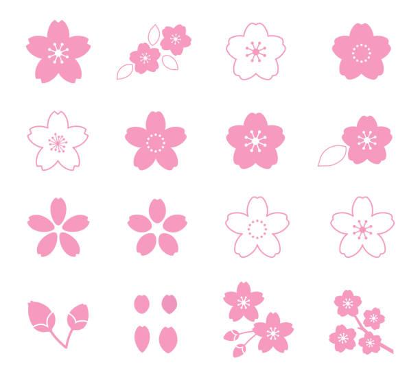 stockillustraties, clipart, cartoons en iconen met cherry blossom flower icon set - bloesem
