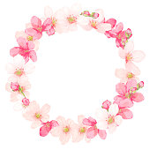 cherry blossom/botanical frame/border/background/greeting card/invitation/vector illustration/spring/pink flower/plant