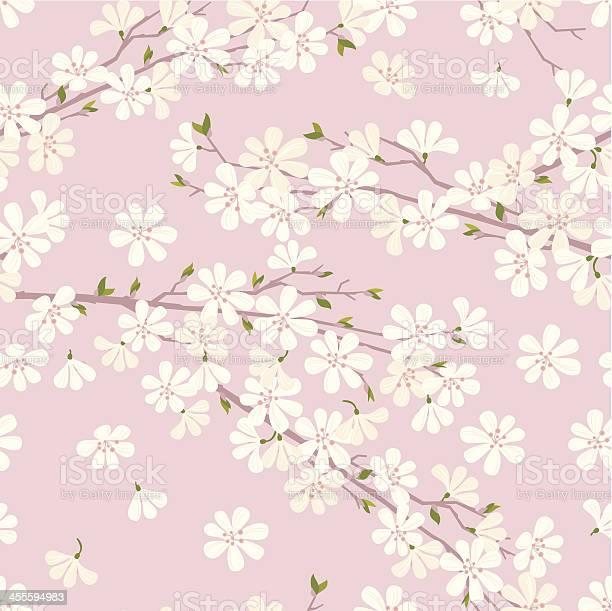 Cherry blossom pattern vector id455594983?b=1&k=6&m=455594983&s=612x612&h=cemlxrceqwmhayuxecaqwqxhoxlrg7 qnytpdpfvklm=
