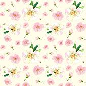 Cherry blossom seamless pattern illustration