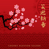 A vector illustration to show cherry blossom in a spring season