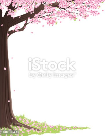 cherry blossom tree frame stock vector art amp more images