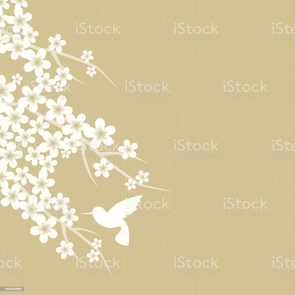 Cherry blossom royalty-free cherry blossom stock vector art & more images of animal