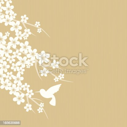Neutral background with white silhouette of cherry blossom flowers and flying hummingbird.