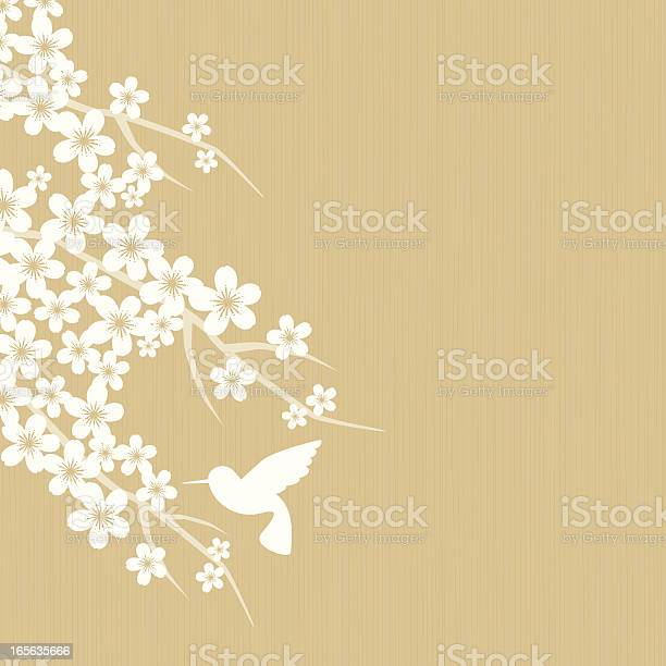 Cherry Blossom Stock Illustration - Download Image Now