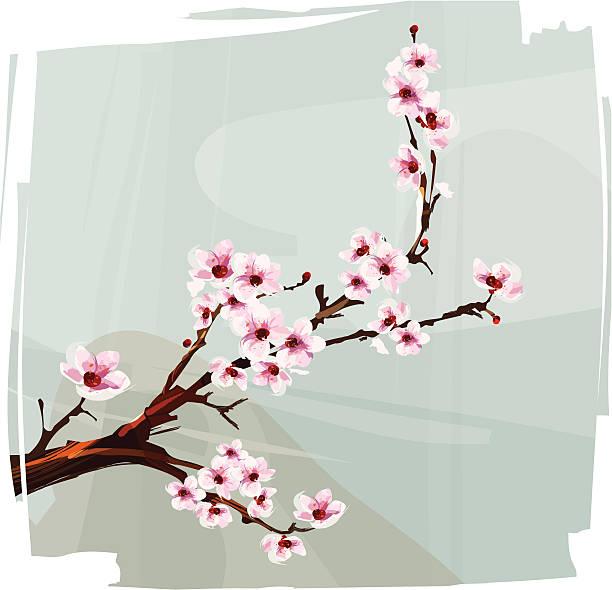 Cherry Blossom Vector Art Graphics Freevector Com