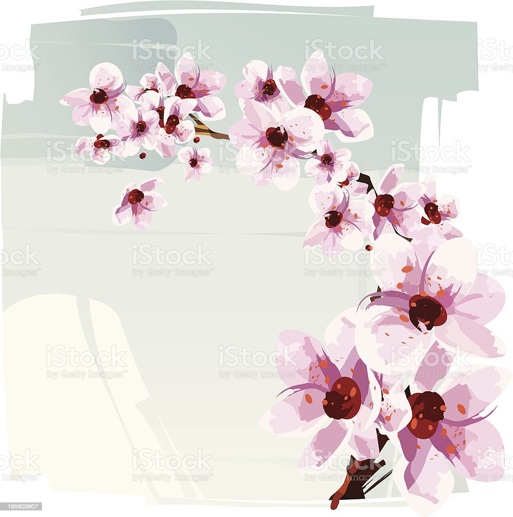 Cherry blossom royalty-free stock vector art