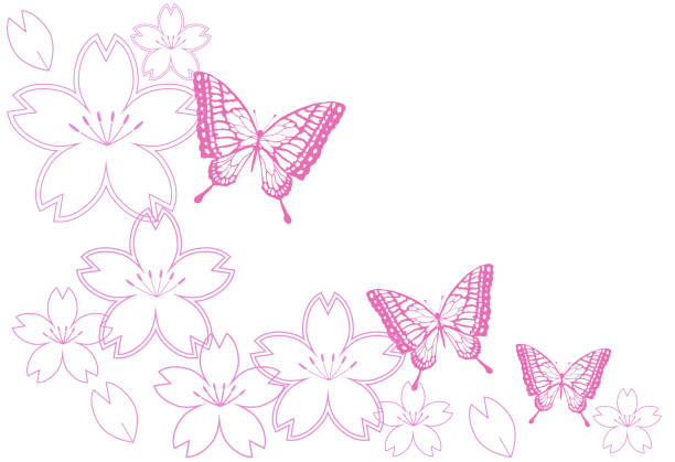 Cherry blossoms and butterfly vector art illustration